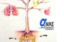 """Nutrizione nella gestione della cura delle """"lesioni complesse"""": una panoramica completa"""