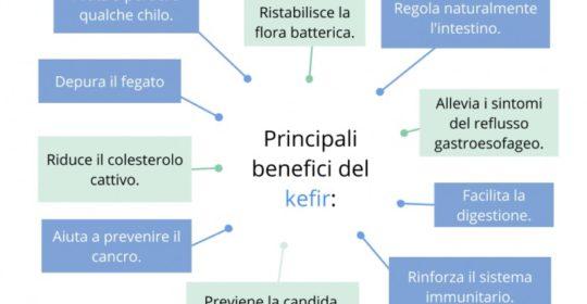 Kefir: nutrire il microbiota intestinale. La regolazione del peso corporeo e benessere