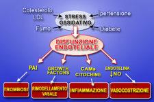 Olio extravergine di oliva e i benefici sul sistema vascolare
